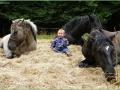 Muž, který hovoří s koňmi