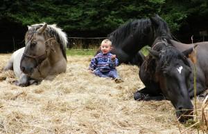 ten který hovoří s koňmi